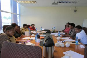 lesotho-nursing-council-meeting2